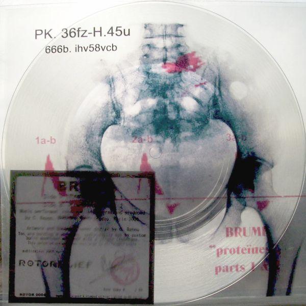 Brume | Protéïnes